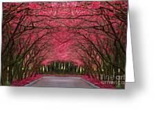 Pink Forest Way Greeting Card by Martin Dzurjanik