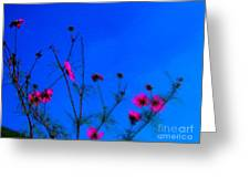 Pink Green And Blue Greeting Card by Tina M Wenger