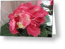 Pink Hydrangea Greeting Card by Barbara McDevitt