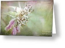 Pink Impression Greeting Card by Teresa Zieba