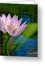 Purple Lotus Flower Impressionism Greeting Card by Carol F Austin