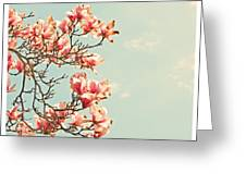 Pink Magnolia Flowers Against Blue Sky Greeting Card by Brooke Ryan