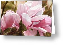 Pink Magnolia One Greeting Card by Joan A Hamilton
