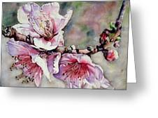 Pink Magnolias Greeting Card by June Conte Pryor