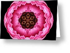 Pink Peony Flower Mandala Greeting Card by David J Bookbinder