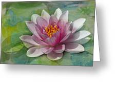 Pink Water Lily Greeting Card by Rebecca Cozart