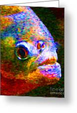 Piranha Greeting Card by Wingsdomain Art and Photography