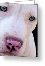 Pit Bull Art - Not A Fighter Greeting Card by Sharon Cummings