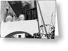 Plants On The Ledge In Mykonos Mono Greeting Card by John Rizzuto