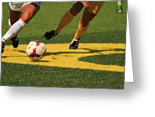 Plays on the Ball Greeting Card by Laddie Halupa