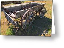 Please Dont Kick The Tires Greeting Card by John Malone