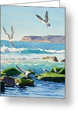 Point Loma Rocks Waves And Seagulls Greeting Card by Mary Helmreich
