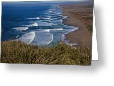 Point Reyes Beach Seashore Greeting Card by Garry Gay