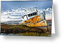Point Reyes Greeting Card by Robert Rus
