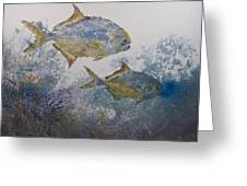 Pompano And Sea Fans Greeting Card by Nancy Gorr