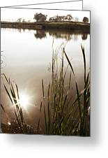 Pond Greeting Card by Les Cunliffe