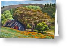 Poppies Near The Barn Greeting Card by Laura Sapko