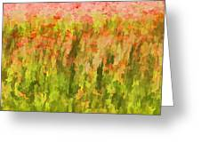 Poppies Of Tuscany IIi Greeting Card by David Letts