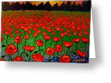 Poppy Carpet  Greeting Card by John  Nolan