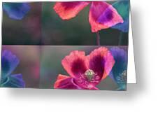 Poppy Greeting Card by Eiwy Ahlund