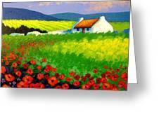 Poppy Field - Ireland Greeting Card by John  Nolan