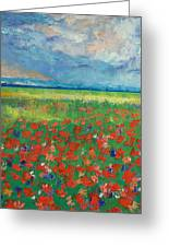 Poppy Field Greeting Card by Michael Creese