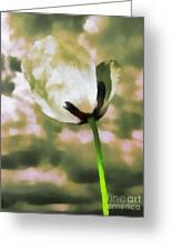 Poppy Flower In The Sky  Greeting Card by Odon Czintos