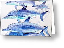 Porpoise Play Greeting Card by Carey Chen