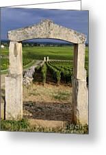 Portal  Of Vineyard.burgundy. France Greeting Card by Bernard Jaubert