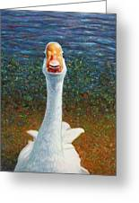 Portrait Of A Goose Greeting Card by James W Johnson