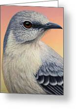 Portrait Of A Mockingbird Greeting Card by James W Johnson
