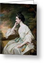 Portrait Of Miss Anne Dutton Greeting Card by Francis Cotes