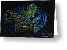 Positive Energy Seashells - Lucky Black Series Greeting Card by Hanza Turgul