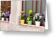 Potted Flowers 02 Greeting Card by Rick Piper Photography