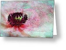 Power Of Poppy Greeting Card by Claudia Moeckel