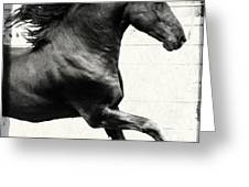 Power Of Stride Greeting Card by Royal Grove Fine Art