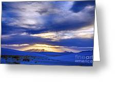 Presence Greeting Card by Scotts Scapes