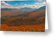 Presidential Range In Autumn Greeting Card by Brenda Jacobs