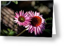 Pretty Flowers Greeting Card by Joe Fernandez