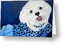 Pretty In Blue Greeting Card by Debi Starr