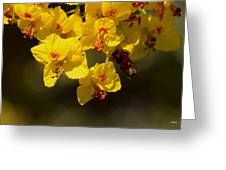 Pretty Yellow Greeting Card by Ivete Basso