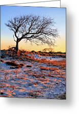 Prevailing Greeting Card by JC Findley