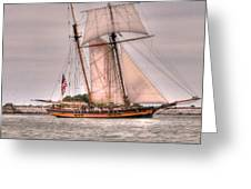 Pride Of Baltimore Greeting Card by Kathleen Struckle
