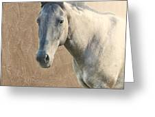 Proud Greeting Card by Betty LaRue