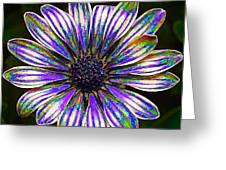 Psychedelic Daisy Greeting Card by Bill Caldwell -        ABeautifulSky Photography