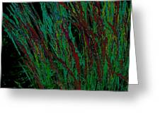 Psychedelic Grass Greeting Card by Karla Ricker