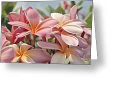Pua Melia Ke Aloha Maui Greeting Card by Sharon Mau