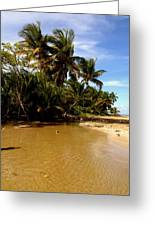 Puerto Rican Dream Greeting Card by Danielle  Broussard