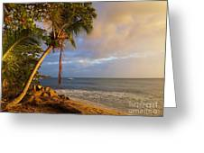 Puerto Rico Palm Lined Beach With Boat At Sunset Greeting Card by Jo Ann Tomaselli