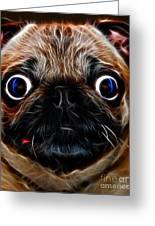 Pug Dog - Electric Greeting Card by Wingsdomain Art and Photography